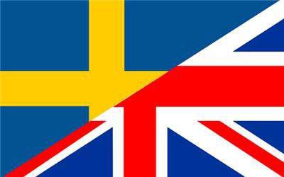 Ripetizioni di lingua inglese/svedese e di qualsivoglia