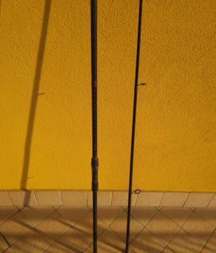 Canna di pesca alla carpa 3,60 mt