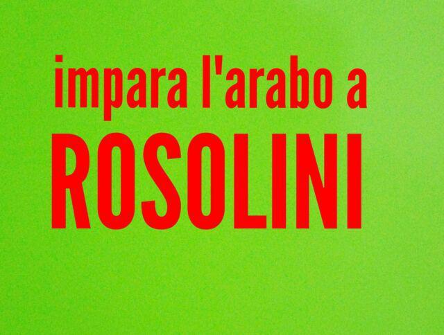 Lingua araba: madrelingua italiano impartisce lezioni di