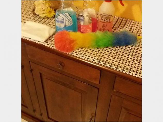 Servizi pulizia e imbiancature per mansione dipulizie
