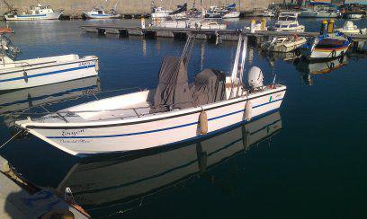 Barca fiart motore nuovo evinrude 40 etec