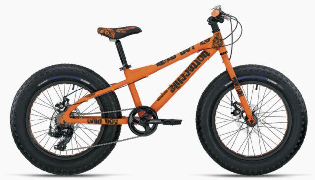 Fat bike 20 bottecchia bimbo nuovo