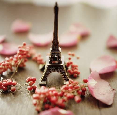 Lezioni di lingua francese