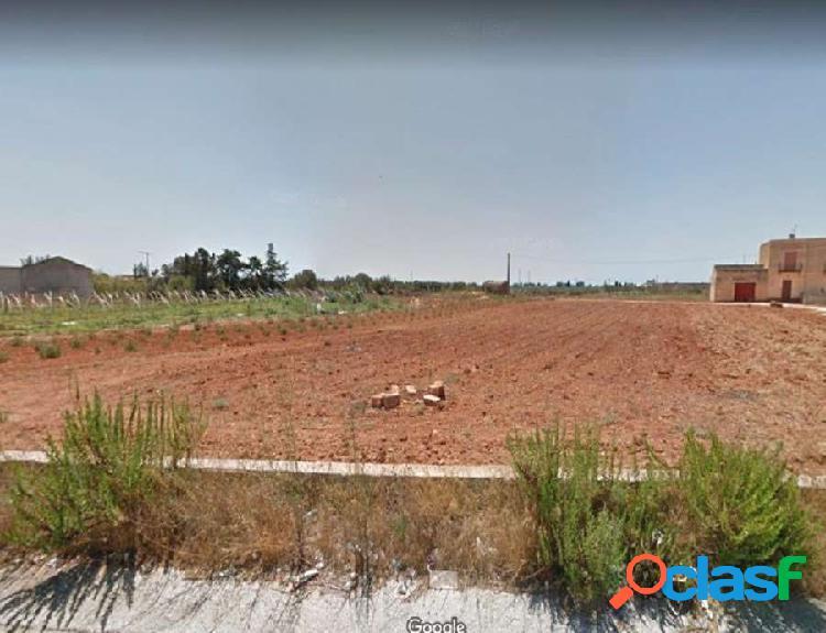 """Terreno """"fronte strada"""" di 8.000mq"""