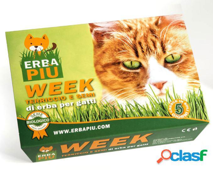 Erba felix week erbapiù® vaschetta - kit per la semina di erba...