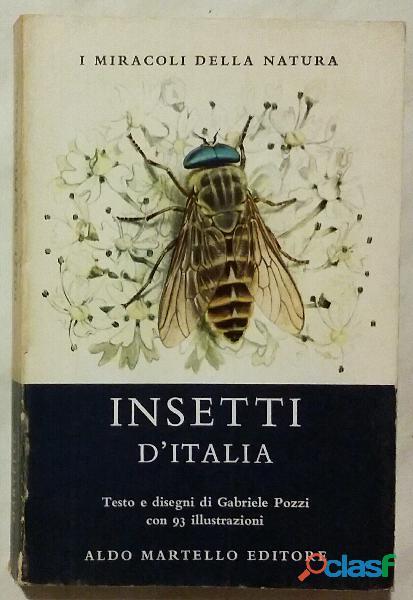 Insetti d'Italia di Gabriele Pozzi; Ed.Aldo Martello, Milano 1972 perfetto