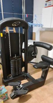 Lower back machine