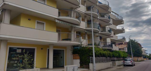 Appartamento a un passo dal mare alba adriatica