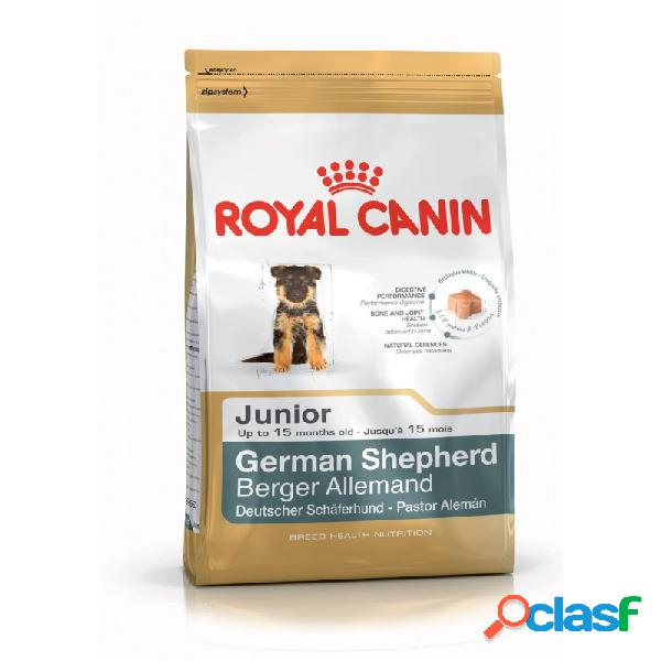 Royal canin razze - royal canin pastore tedesco junior crocchette sacco da 12 kg