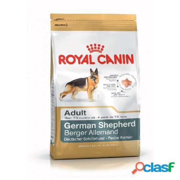 Royal canin razze - royal canin pastore tedesco adult sacco da 3 kg