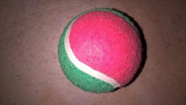 Pallina bicolore da tennis prezzo regalo