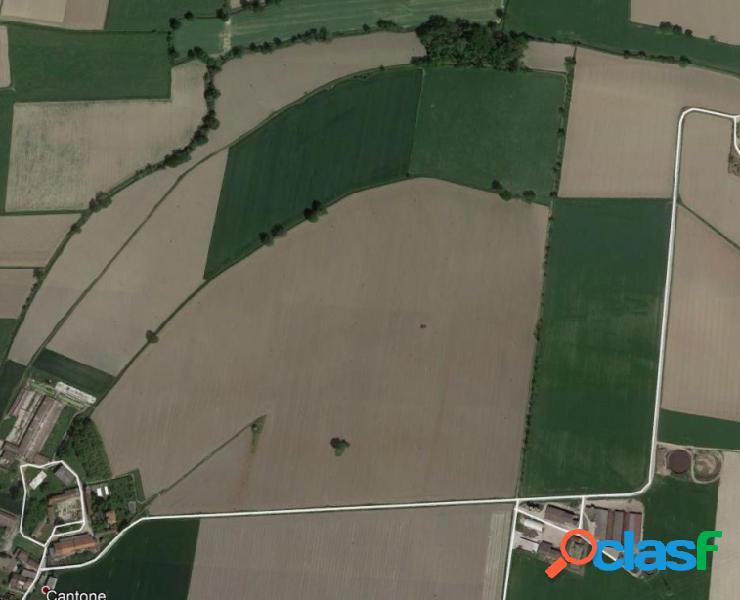 Stagno lombardo (cr) localita' cantone solata