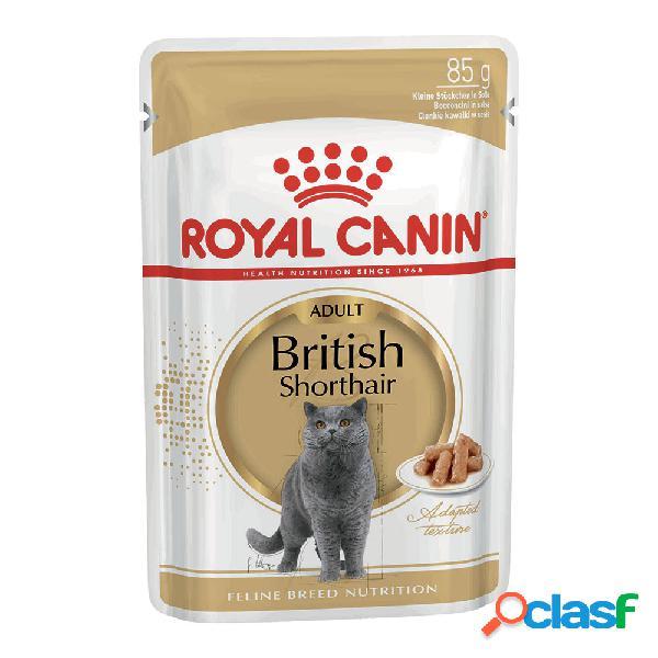 Royal canin british shorthair 85 gr.