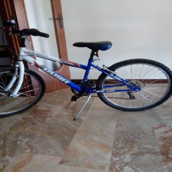 Bicicletta ragazzo