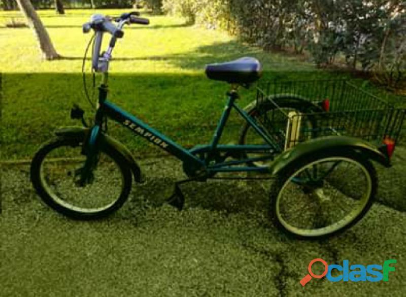 Triciclo Sempion con cambio e cestino posteriore