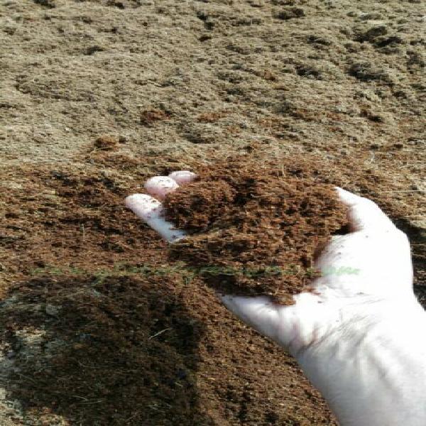 Lettiera animali, cavalli in fibra di cocco