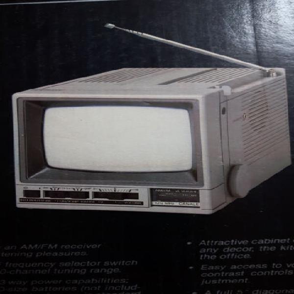 Televisore portatile geloso