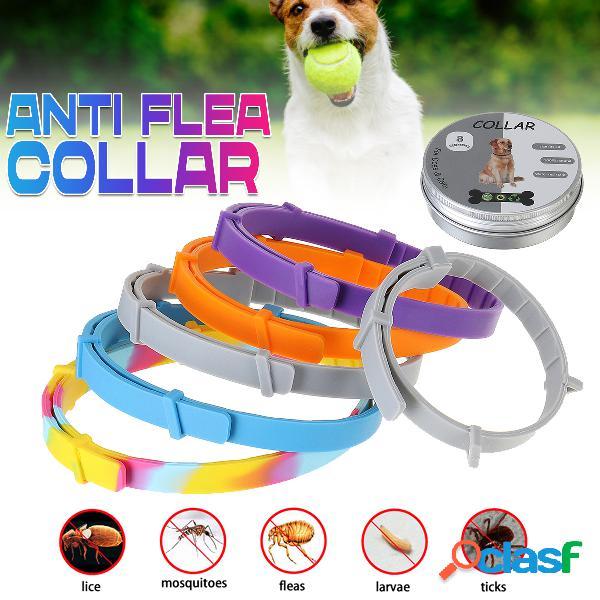 Articoli per animali domestici collare anti-pulce repellente per insetti collare anti-pulce per cani e gatti scatola in alluminio