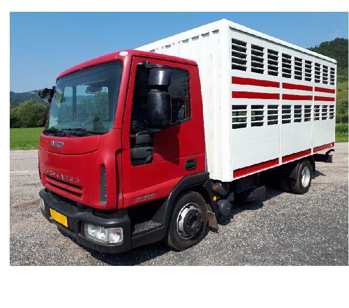 Eurocargo 80e22k trasporto animali