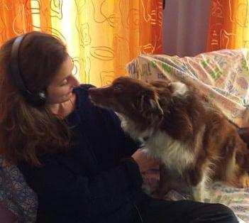 Dog sitter/ pet sitter (passeggiate o visite a domicilio)