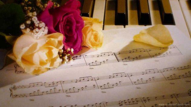 Musica per il matrimonio in provincia di asti (quartetto i
