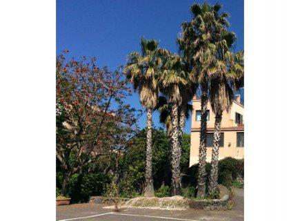 Catania/Cannizzaro, splendida villa singola su 2 livelli