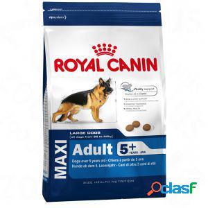 Royal canin maxi adult mature +5 kg 15 (per cani oltre 5 anni)