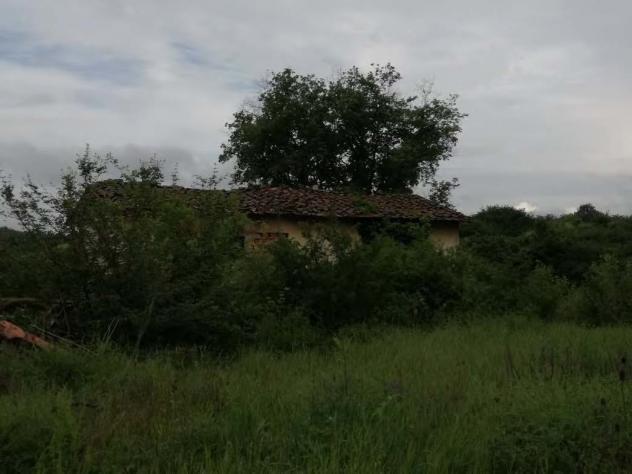 Terreno in vendita a terranuova bracciolini - rif. 3386562