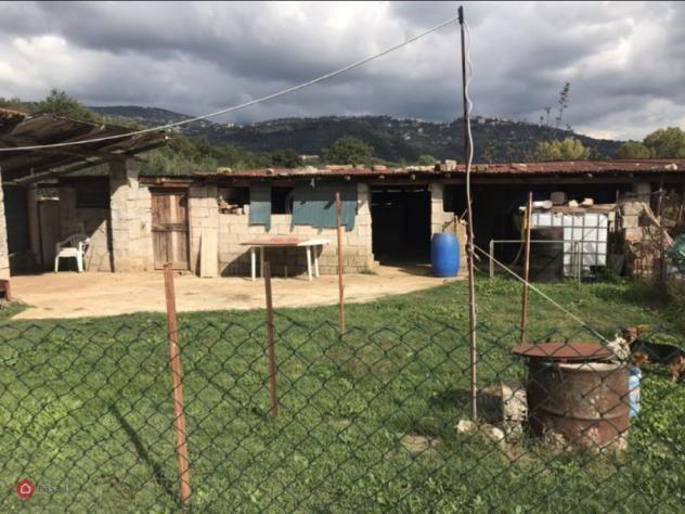 Terreno agricolo di 100mq a alatri