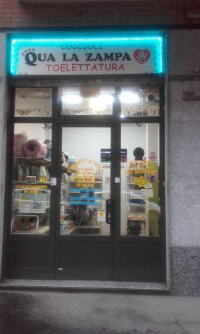 Toelettatura,pet-shop e animali da compagnia