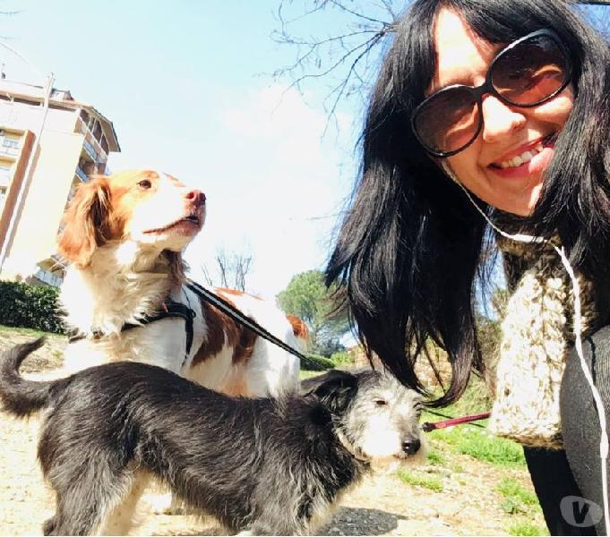 Dog sitter e cat sitter di fiducia, seria ed affidabile