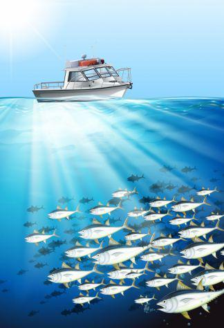 Barca da pesca fisherman privati