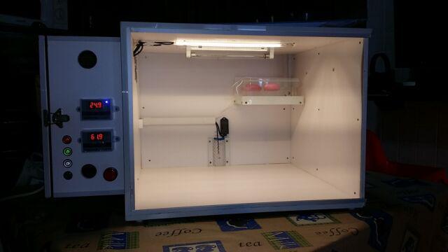 Camera calda digitale nuova per pulli di grosse dimensioni