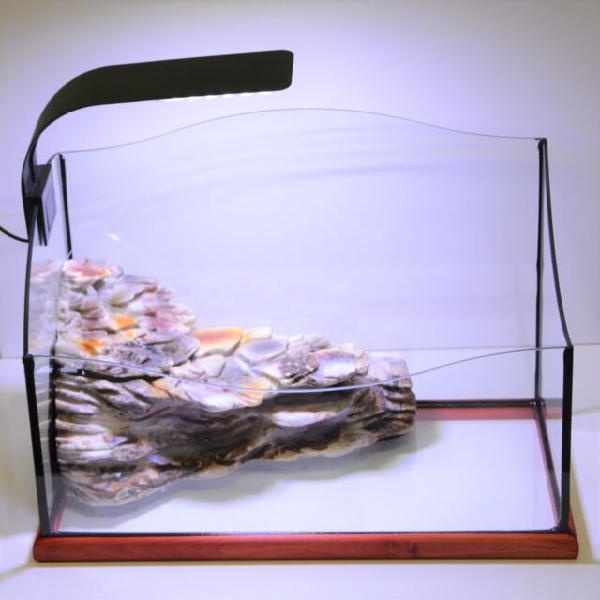 Tartarughiera rettangolare 43x23x25h cm