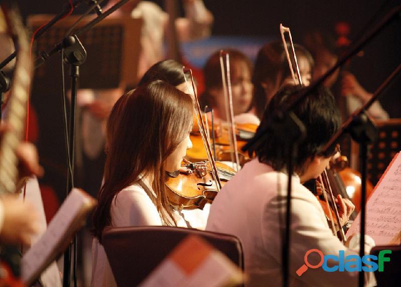 Violinista per musica al matrimonio ad Abbiategrasso