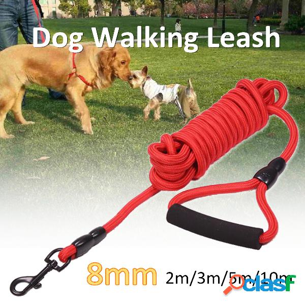 Dogs leads walking leash outdoor pet puppy cintura cinturino da allenamento collare corda rossa