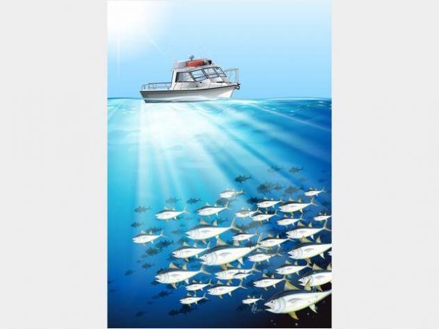 Barca a motorerobalo cabinato open fisherman anno9999