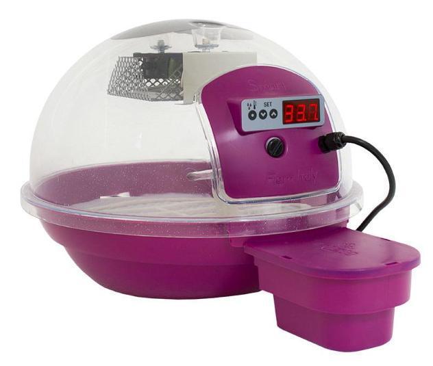 Incubatrice per uova fiem smart digitale 24 viola