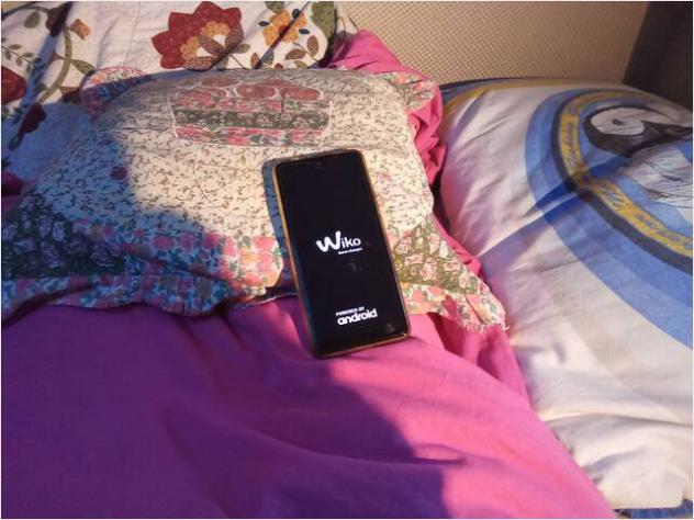 "Smartphone wiko view 2 pro, dual sim, display 6"" usato"