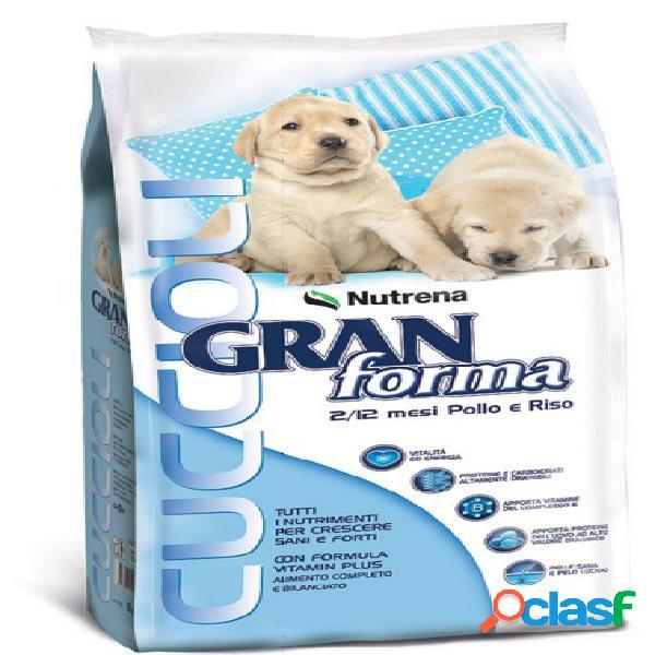 Gran forma dog cuccioli kg.3
