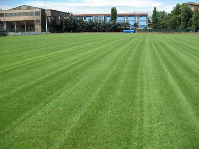 Consulenza manutenzione campi da calcio