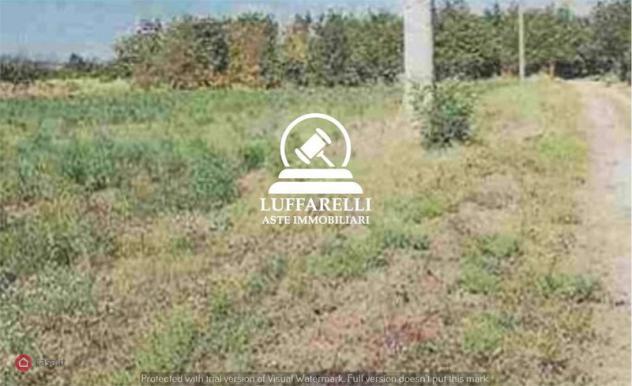 Terreno agricolo di 33300mq in via vignolese a spilamberto
