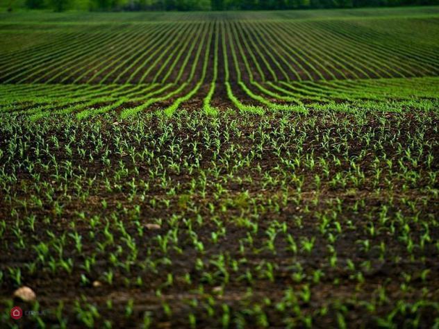 Terreno agricolo di 540mq in via gnera a villa d'almè