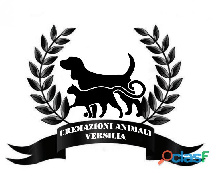 Cremazione animali versilia