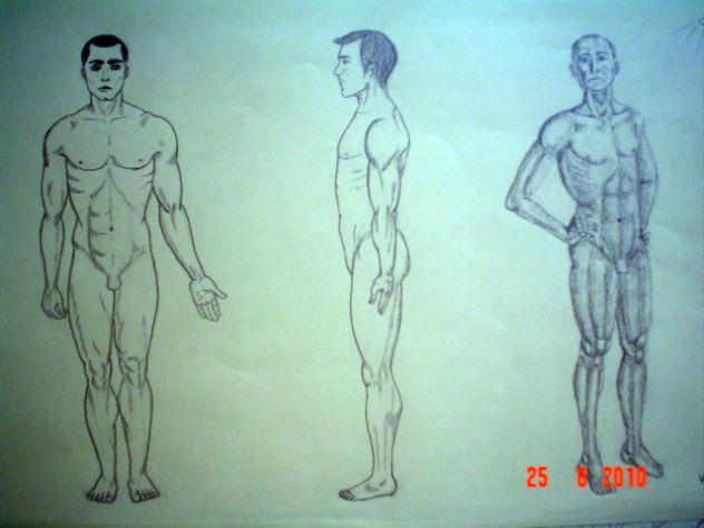 Miglior corso di disegno a mano libera ogni età (zona