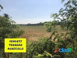 Aprilia - fossignano terreno agricolo 1260 mq
