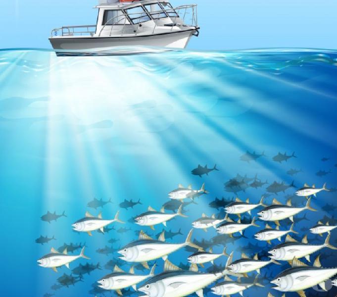 Barca da pesca fisherman privati na bacoli - barche usate occasione