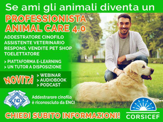 Corsi per professionista animal care 4.0