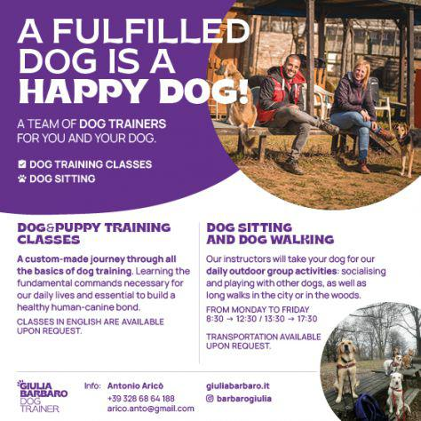 Dog trainers and dog sitters