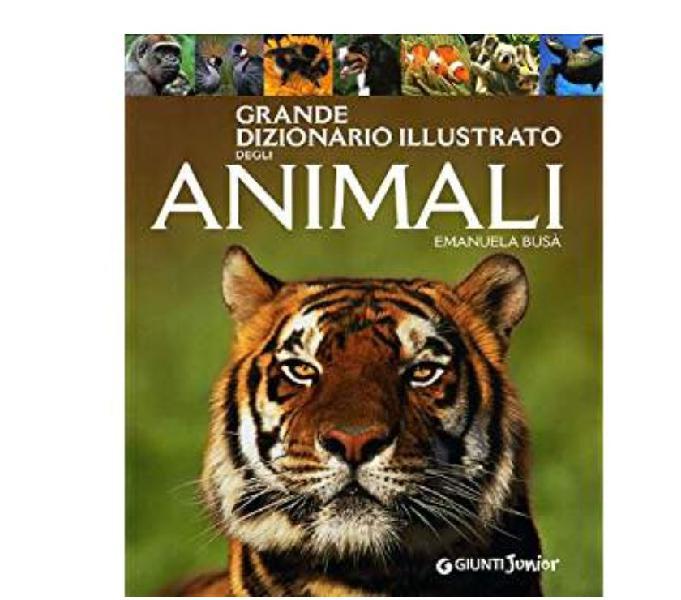Grande dizionario illustrato degli animali genova - collezionismo in vendita
